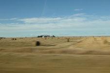 ロッキーの草原の画像001