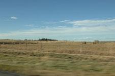 ロッキーの草原の画像002