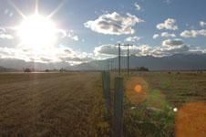 ロッキーの草原の画像008