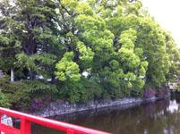 箱根のお堀の画像001