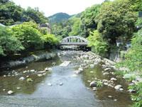 箱根の川の画像004