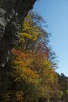 瓶ヶ森の紅葉の画像003