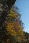 瓶ヶ森の紅葉の画像004