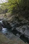 剣山の川の画像003